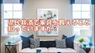 家具 県民共済住宅